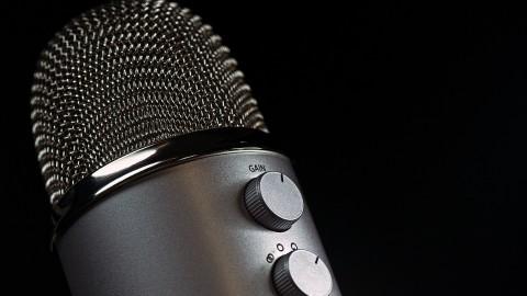 Pro Bono VO: A professional perspective
