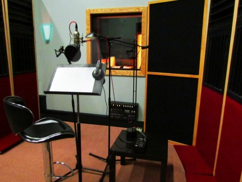 Working Wednesday: Welcome to Animation Voice-Over